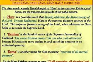 In the Hare Krishna Mahamantra, what does 'Hare' mean?